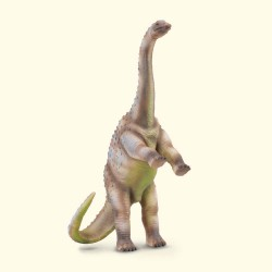 Rhoetosaurus - Collecta