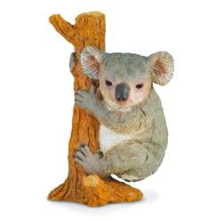 Koala - Collecta