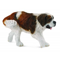 Saint bernard - Collecta